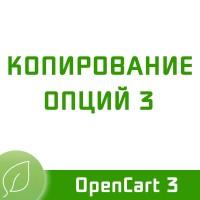 Копирование опций 3