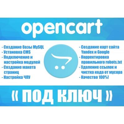 Профессиональная установка и полная настройка cms Opencart