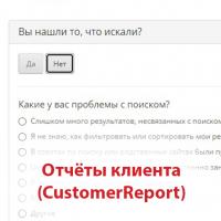 Отчёт клиента (CustomerReport)