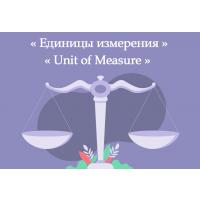 Единицы измерения   Unit of Measure