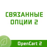 Связанные опции 2.3.1